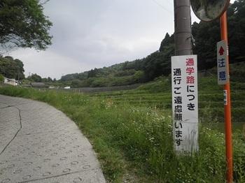 P6022153.JPG